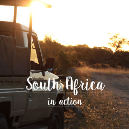 South Africa – Kruger National Park